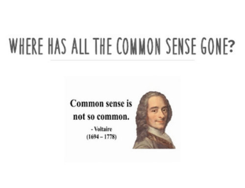 "We are not ""Quant""; we apply common sense"
